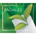 Faciales (1)