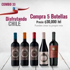 Combo Disfrutando Chile